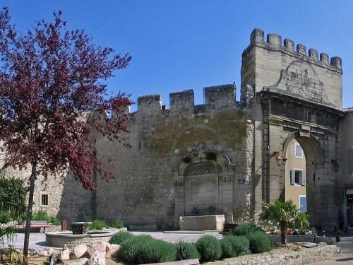 Monteux - Tourism, holidays & weekends guide in the Vaucluse