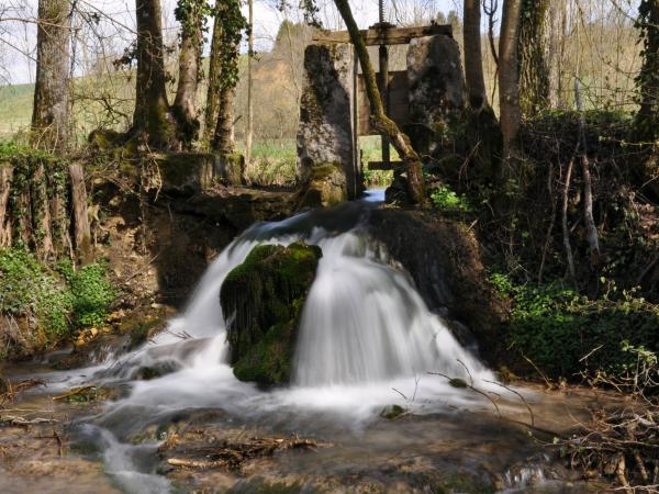 Montfey - Tourism, holidays & weekends guide in the Aube