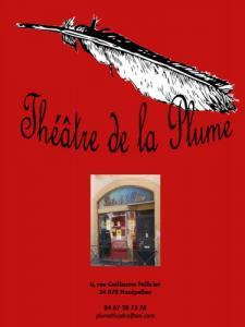 Theatre De La Plume Salle De Spectacle A Montpellier