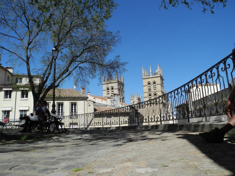 Cath drale saint pierre monument montpellier - Cathedrale saint pierre de montpellier ...