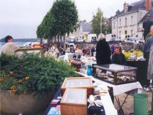 The Flea Montsoreau
