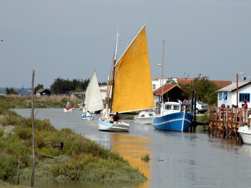 Mornac-sur-Seudre - Tourism, holidays & weekends guide in the Charente-Maritime
