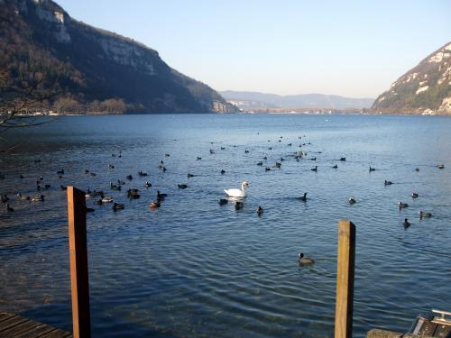 Nantua - Tourism, holidays & weekends guide in the Ain
