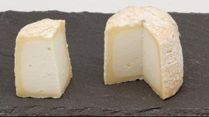 Chabichou cheese from Poitou (PDO and AOC)