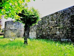 West wall of the medieval walls of the city (© Jean Espirat)