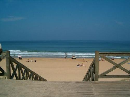 Ondres - Tourism, holidays & weekends guide in the Landes