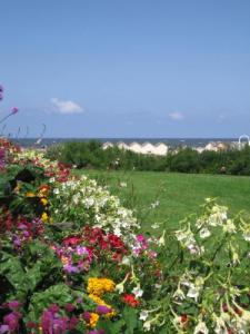 Ouistreham, city and beach flowers