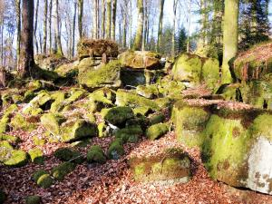 Rocky chaos on the southern slope, under the fairy castle in Clairefontaine (© Jean Espirat)