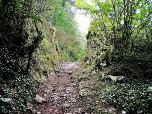 Ancient Way, towards the Pierre qui Vire (© Jean Espirat)