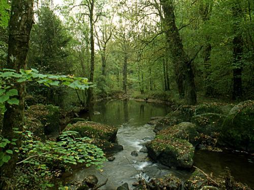 Porcaro - Tourism, holidays & weekends guide in the Morbihan