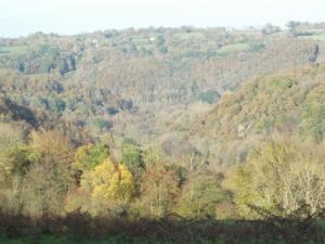 Saint-Aubert-on -Orne - autumn Landscape
