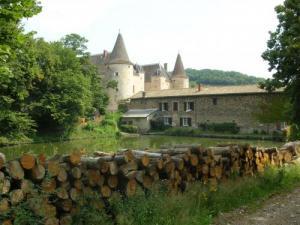 chateau a vendre quincie en beaujolais