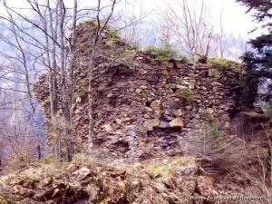 Ruins of the castle Rosemont