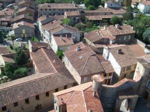 The roofs of Rieux
