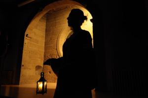 Castle Roussillon - Night tours