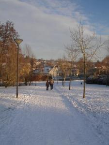 Closeaux the area under snow