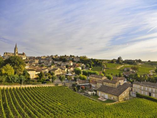 The medieval town in the heart of the vineyard