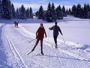 Cross-country skiing in Savoie Grand Revard (© Boccon Doure)