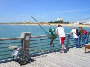 flounder fishing on the pier in