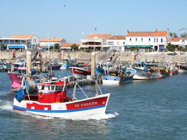 St pierre oleron office tourisme - Office de tourisme saint pierre d oleron ...