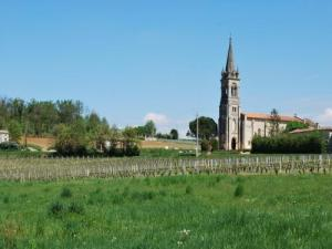 The vines and the church of the town