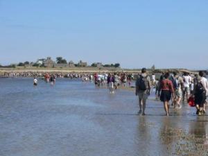Mus e maritime de l 39 ile tatihou lieu de loisirs saint - Office du tourisme st vaast la hougue ...
