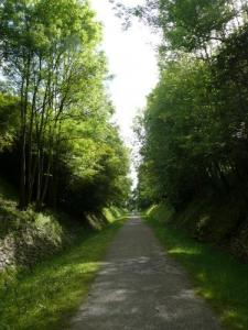 the driveway that goes from green to Salies-de-Béarn Escos