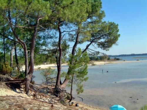 Sanguinet - Tourism, holidays & weekends guide in the Landes