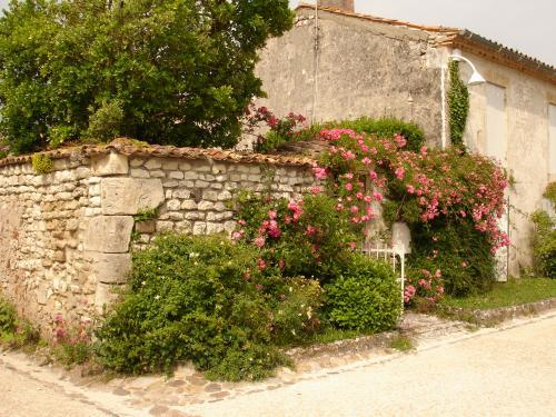 Talmont-sur-Gironde - Tourism, holidays & weekends guide in the Charente-Maritime