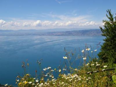 Thollon-les-Mémises - Tourism, Holidays & Weekends
