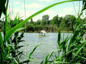 Venansault turismo vacanze e weekend for Affitti della cabina del pepin del lago