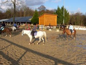 The carousel horse riding center