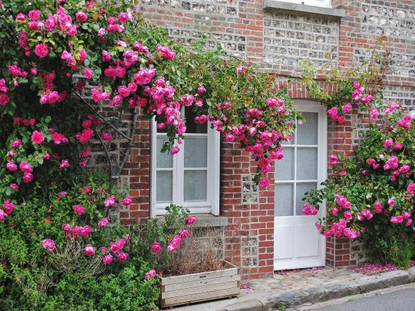 Veules-les-Roses - Tourism, holidays & weekends guide in the Seine-Maritime