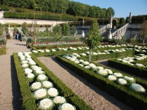 Villandry Gardens - Vegetable garden