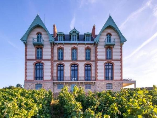 Chateau de Sacy - Hotel in Sacy