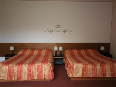 Hotel Relais Paris Bale