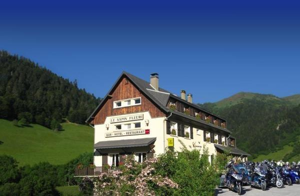 Le Sapin Fleuri - Holiday & weekend hotel in Bourg-d'Oueil