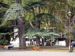 Agen - Square with trees and benches