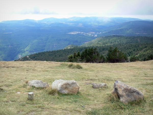 Aigoual mountains - From mount Aigoual, view of the surrounding woodland; in the Aigoual massif, in the Cévennes National Park (Cévennes massif)