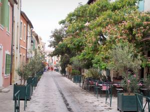 Aigues-Mortes - Street, trees, restaurant terraces and facade of houses, inside the ramparts