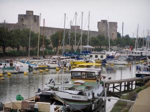 Aigues-Mortes - Sailing and fishing harbour with its moored boats and ramparts of the town in the background
