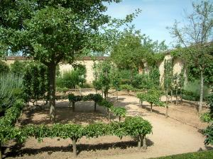 Ainay-le-Vieil castle - Montreuils chartreuses: garden (orchard) with fruit trees