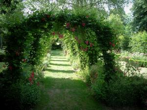 Ainay-le-Vieil castle - Path in the rose garden