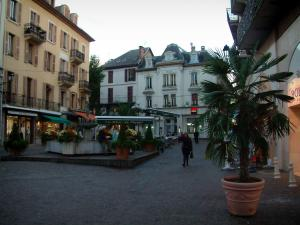 Aix-les-Bains - Houses, fountain decorated with flowers, shrubs and cafe terraces in a pedestrian street