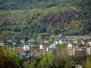 Albertville - From the medieval town of Conflans, view of trees, the forest, the church, the buildings and the houses of the Olympic Games city