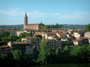 Albi - Berbie palace gardens, view of the River Tarn, trees, houses and the Sainte-Madeleine church