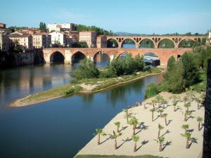 Albi - Beach decorated with palm trees, trees, the River Tarn, the Pont-Vieux bridge, the August 22nd, 1944 bridge and buildings of the city
