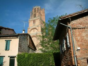 Albi - Houses and bell tower of the Sainte-Cécile cathedral