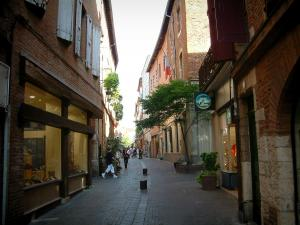 Albi - Pedestrian street, shops, brick-built houses and town hall