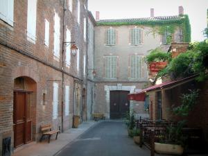 Albi - Brick-built houses among which the birth house of Toulouse-Lautrec (Bosc mansion)